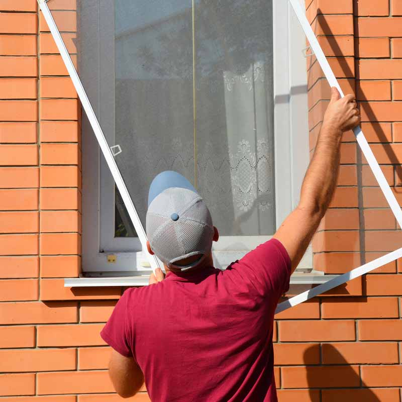all window cleaning_Fly screens